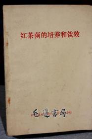 红茶菌的培养和饮效