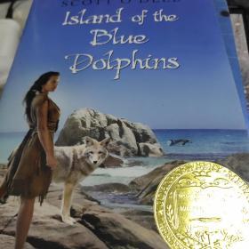 《特价》Island of the Blue Dolphins  蓝色的海豚岛 9780547328614