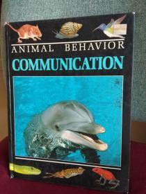 ANIMAL BEHAVIOR COMMUNICATION   动物的行为表现:  交流
