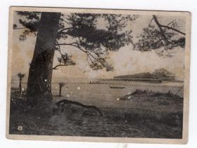 民国报纸图片类----民国原版老照片--1930年前后时间, 海边栈道