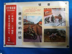 1971年宣传画三防挂图,二十二对开挂图