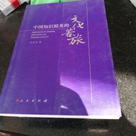 中国知识精英的文化苦旅