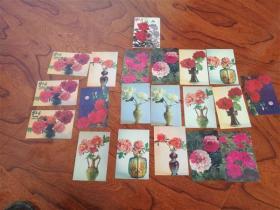 牡丹花卉 明信片 19张
