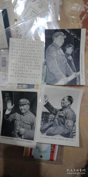 毛主席接见红卫兵的摄影画片3张