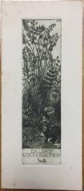 德国早期铜版藏书票花丛中的蒲公英