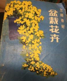 怎样养好盆栽花卉