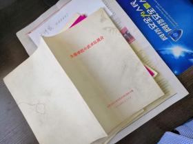 大寨学校小武术队简介  山西省中小学文艺武术汇演