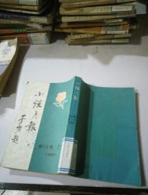 小说月报(13)