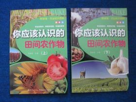 【悦读馆-农业知识百科插图版】你应该认识的田间作物(上、下)