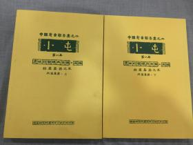 中国考古报告集之二:小屯(第一本)遗址的发现与发掘丙编--殷墟墓葬之五(丙区墓葬 上下)