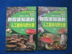 【悦读馆-农业知识百科插图版】你应该知道的人工栽培与野生菌(上、下)
