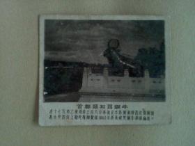 北京照片文献    首都颐和园铜牛