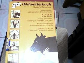 畜牧生产多语言带图词典