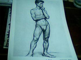 8开素描单页  男人体  詹建俊画