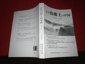 走在山坡上的中国---中国趋势 中国梦(修订本)