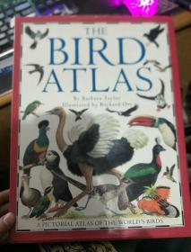英文原版 THE BIRD ATLAS by barbara taylor  illustrated by richard orr(鸟类图集)8开精装