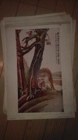 民国珂罗版8开画页一张;一声长啸百兽惊/胡郯卿 作。上海古今名画出版社印行.37.5x26cm。散页序号 B【118】
