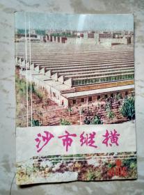 沙市纵横1986.6