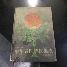 中华名医特技集成 1993年一版一印中国医药科技出版社