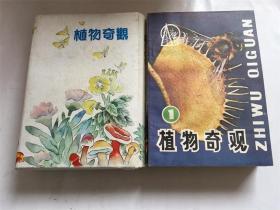 植物奇观〈四册全〉带外套