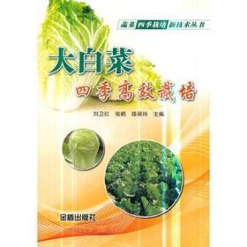 大白菜四季高效栽培