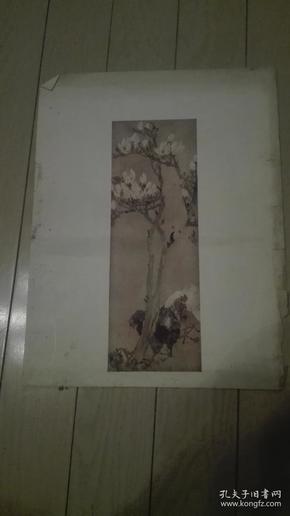珂罗版花鸟画一张、33.5x25cm