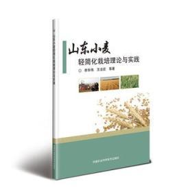 山东小麦轻简化栽培理论与实践