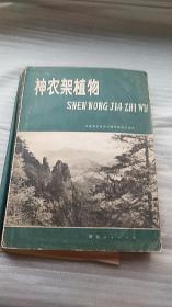 神农架植物 1980年1版1印 16开 仅卬1200册