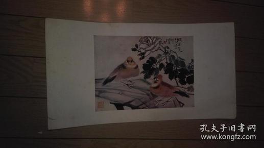 珂罗版花鸟画一张,任伯年 作。38x20cm