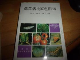 蔬菜病虫原色图谱