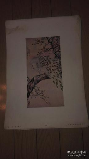 珂罗版花鸟画一张;素羽/许士骐作。38x27cm、上海文华美术书店印行。序号;91