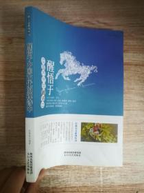 醒悟于中国古代的禅诗中