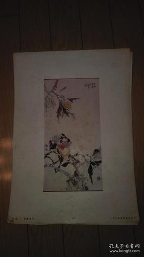 珂罗版散页一张;花鸟/张书旂作。38x27cm、上海文华美术书店印行,序号;94