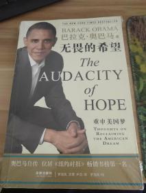 无畏的希望:重申美国梦