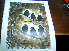 老版8开美术作品散页 1张 印刷品 ,红叶小鸟 林风眠