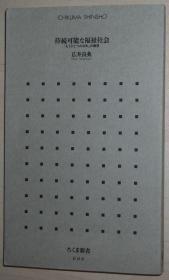 日文原版书 持続可能な福祉社会 「もうひとつの日本」の构想 (ちくま新书) 広井良典