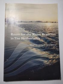 room for the rhine branches in the netherlands