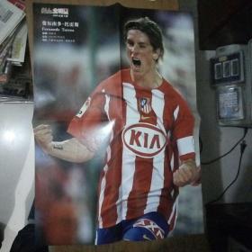 足球海报:费尔南多托雷斯(52cm37cm)