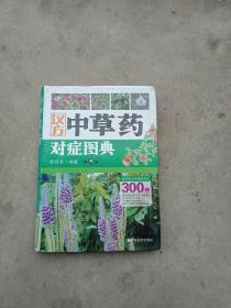 汉方中草药对症图典(第4册)