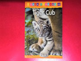 I Love reading:Tiger Cub