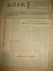 《安徽日报》【整版:前进中的芜湖工业照片】