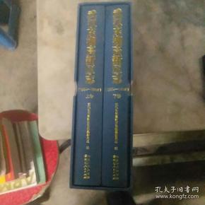 武汉东湖高新区志1904-2010