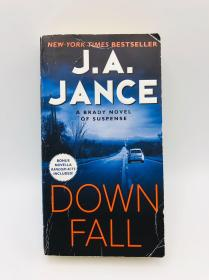 Downfall: A Brady Novel of Suspense 英文原版《垮台》