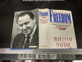 Freedom - A Novel of Abraham Lincoln and the Civil War【自由——亚伯拉罕·林肯与内战的小说】【精装】【16112】