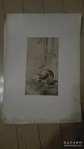 8开珂罗版散页画一张;鸡/胡斌作。38x27cm。上海古今名画出版社印行。序号;74