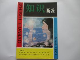 知识画报  1981  创刊号