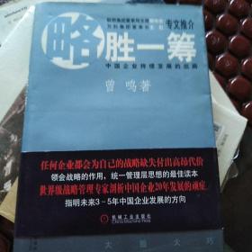略胜一筹:中国企业持续发展的出路