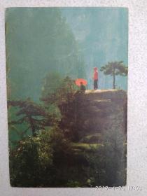 红装扮翠绿 人在画屏中  马元浩  摄影图片 (共8张)