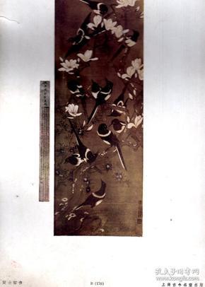 8开珂罗版散页一张;花鸟/黄士诏 作。38x27cm。上海古今名画出版社印行。序号B【170】