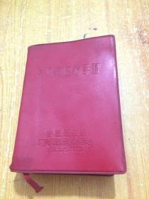 常见病医疗手册 (中医研究院 广安门医院革命委员会)